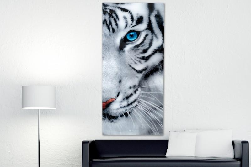 Obraz Fixion 160x70cm sklo
