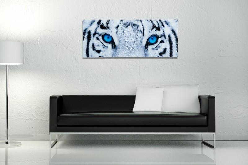 Obraz Fixion 40x100cm Tiger sklo