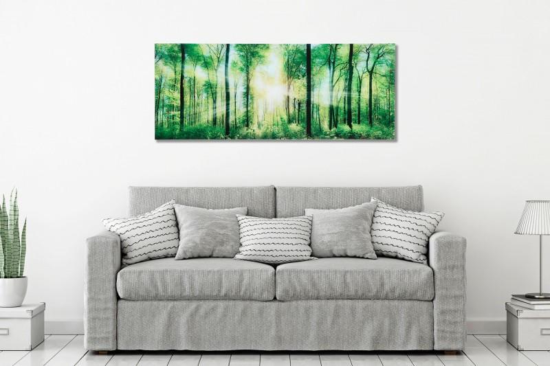 Obraz Forrest 40x100cm Wald sklo