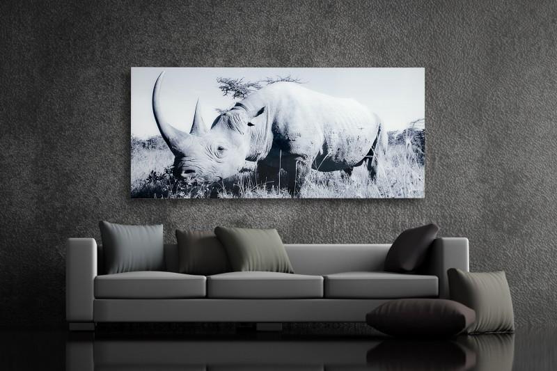 Obraz Nashorn 140x60cm sklo