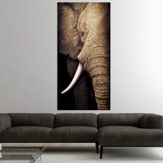 Olejomaľba WisdomOfNature 75x150cm Elefant